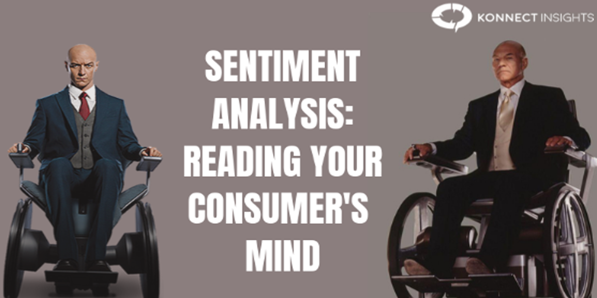 Sentiment Analysis: Reading Your Consumer's Mind